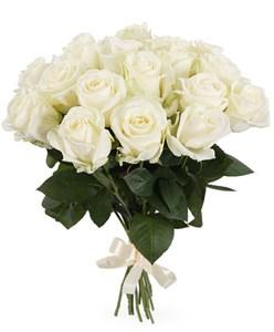 Букет 17 роз Аваланш 60/70 см