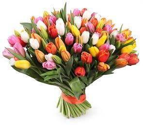Букет 101 тюльпан, радужный микс