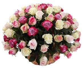 Букет Кроткий румянец (101 роза в корзине)