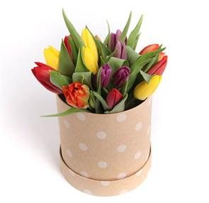 15 тюльпанов микс в шляпной коробке (крупный горох)