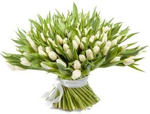 Букет 151 тюльпан, белые