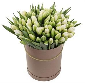 101 королевский тюльпан в коричневой коробке, белые