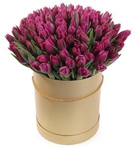 101 королевский тюльпан в коричневой коробке, пурпурные