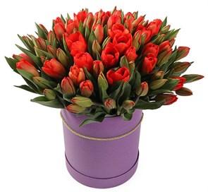 101 королевский тюльпан в фиолетовой коробке, красно-оранжевые