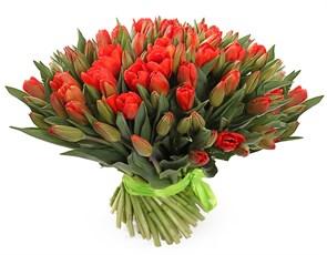 Букет 101 королевский тюльпан, красно-оранжевые