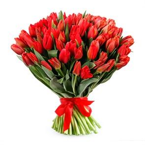 Букет 101 королевский тюльпан, красные