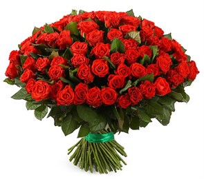 Букет 101 красная роза, 50 см