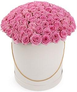 101 роза Аква в шляпной коробке