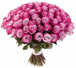 Букет 101 роза Дип Перпл
