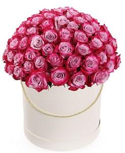 101 роза Дип Перпл в шляпной коробке
