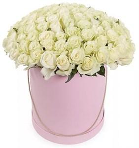 101 роза Мондиаль в шляпной коробке