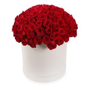101 роза Фридом в шляпной коробке