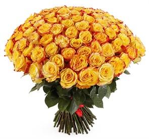 Букет 101 роза Хай Еллоу