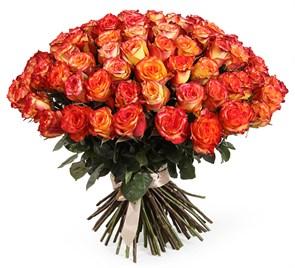 Букет 101 роза Хай Мэджик