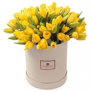 101 тюльпан в коробке, желтые