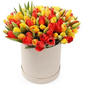 101 тюльпан в коробке, красно-желтый микс