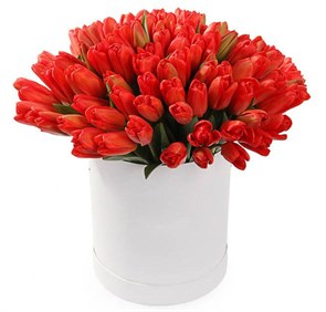 101 тюльпан в коробке, красные
