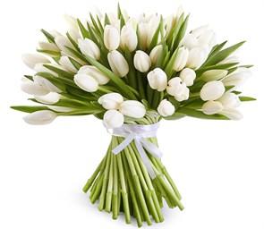 Букет 101 тюльпан, белые