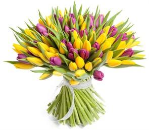Букет 101 тюльпан, желто-фиолетовые