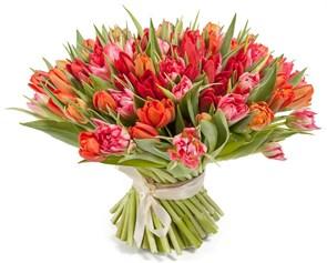 Букет 101 тюльпан, красно-розовые