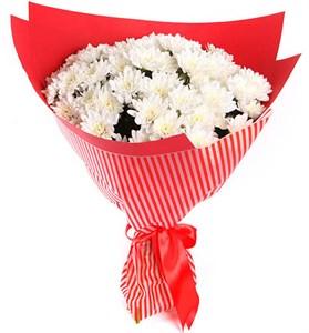 Букет 15 белых кустовых хризантем в красной бумаге
