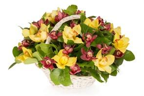 Букет с орхидеями Крошка Доррит в корзине