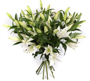 Букет 11 лилий Белая красавица