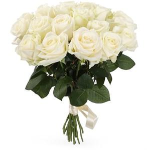 Букет 19 роз Аваланш 60/70 см