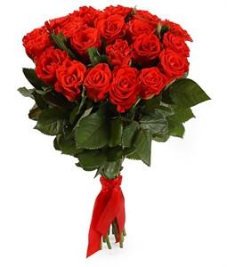 Букет 21 красная роза, 50 см
