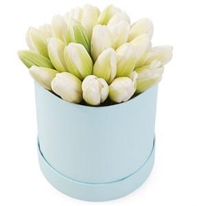 25 королевских тюльпанов в голубой коробке, белые
