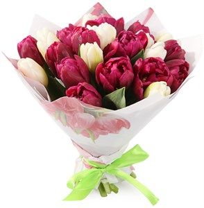 Букет 25 королевских тюльпанов, малиновый микс