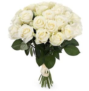 Букет 25 роз Аваланш 60/70 см