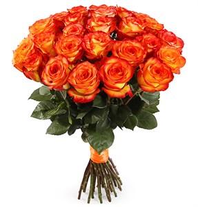 Букет 25 роз Хай Мэджик