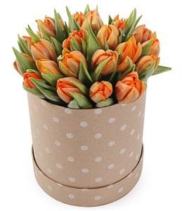 25 тюльпанов в коробке, оранжевые