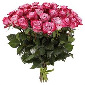 Букет 31 роза Дип Перпл