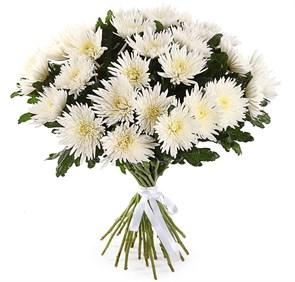 Букет 31 хризантема Сингл