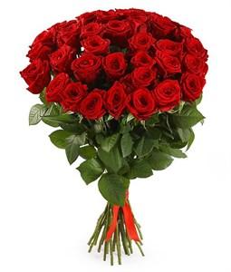 Букет 35 красных роз 60/70 см