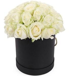 25 роз Аваланш в шляпной коробке