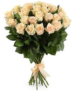 Букет 25 роз Талея