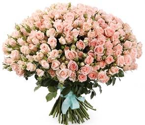 Букет 101 кустовая роза Свит Сара