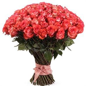 Букет 101 роза Игуана, коралловая