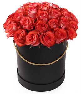 35 роз Игуана в шляпной коробке