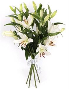Букет 5 лилий Белая красавица