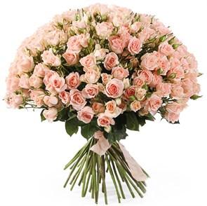 Букет 50 кустовых роз Свит Сара