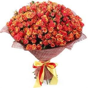Букет 50 кустовых роз Фаер Флеш