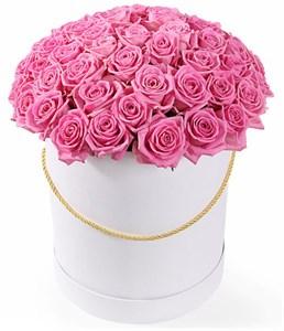 51 роза Аква в шляпной коробке