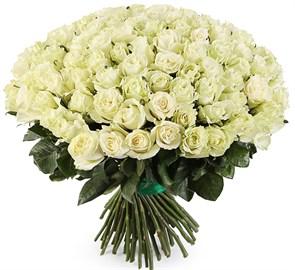 Букет 101 роза Мондиаль