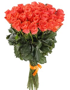 Букет 51 роза Вау