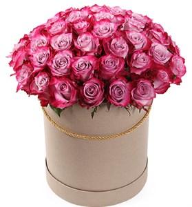 51 роза Дип Перпл в шляпной коробке