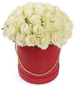 51 роза Мондиаль в красной шляпной коробке